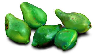 10 Best Benefits and Uses Of Kakadu Plum For Skin, Hair and Health