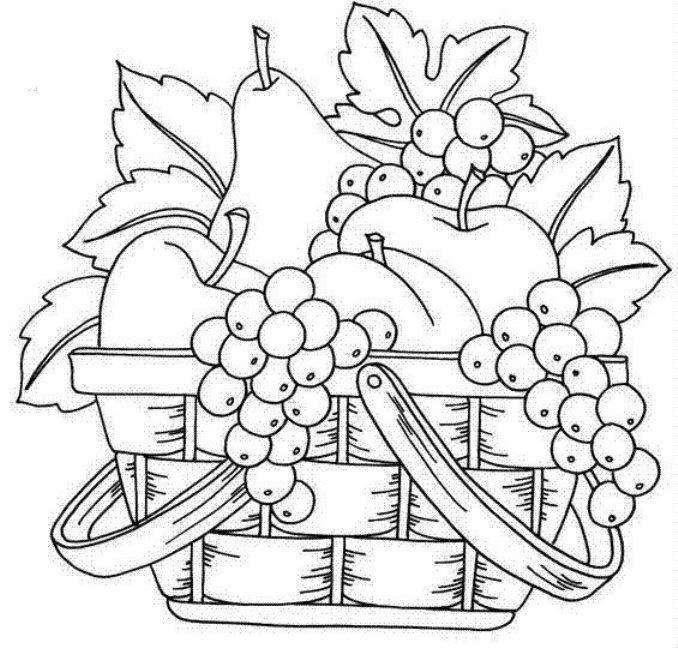 Simple Flower Basket Drawing : Fruit basket art clip line drawings sketching