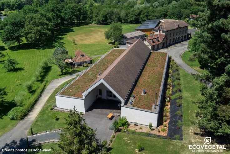 64_SALIES DE BEARN_Hameau Bellevue_Saxa ESDPack_1000m² http://www.ecovegetal.com/