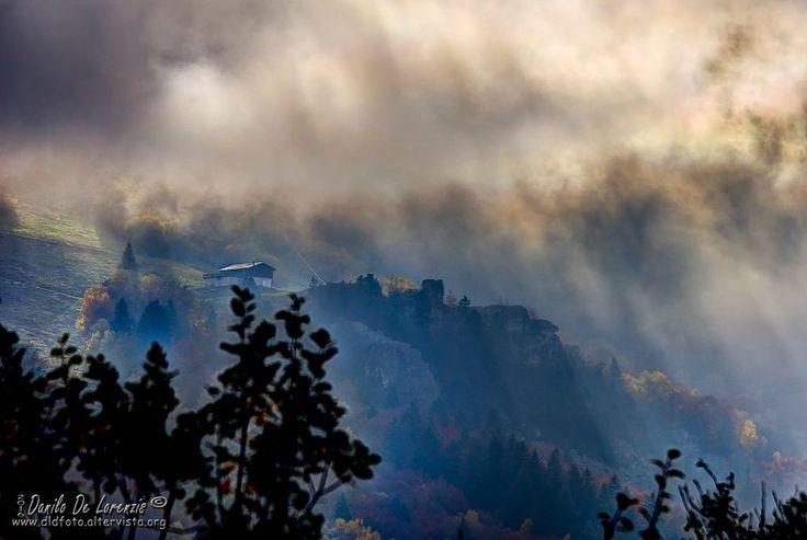 ... in the fog by dlddanilo
