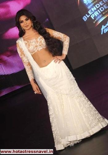 Priyanka Chopra Navel Saree