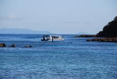 The Total Goat Island Experience - Glass Bottom boat - Snorkeling - Kayaking
