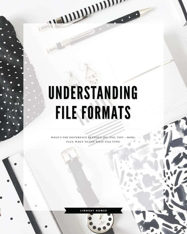 Understanding File Formats: What's The Difference between JPG, PNG, and GIF