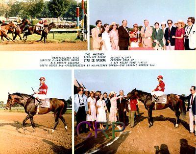 Star De Naskra(1975)(Colt) Naskra- Candle Star By Clandestine. 4x5 To Nearco, 5(C)x5(C) To Pharos, 5(F)x5(F) To Hyperion. 36 Starts 15 Wins 10 Seconds 4 Thirds. $587,931.   Won Whitney H(G2), Carter H(G2), Cornhusker H(G2), Bold Ruler H, Timonium Futurity, Dover S, Marlboro Nursery S, Penn Treaty S. Died In 2000.