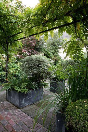 terrasse luxuriante dans le 16 me jardin pinterest terrasses terrasse paris et mur vegetal. Black Bedroom Furniture Sets. Home Design Ideas