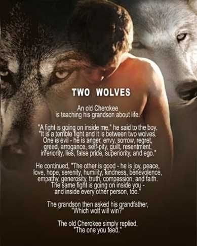 Power flows to where attention goes. This is Nathan. He is feeding the wrong wolf and I hope he changes it....soon.