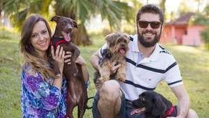 Longe da crise: a pet shop online que não para de crescer