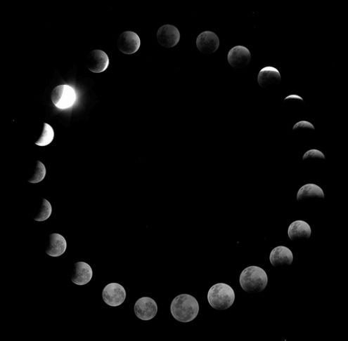 Fases de la Luna                                                       …