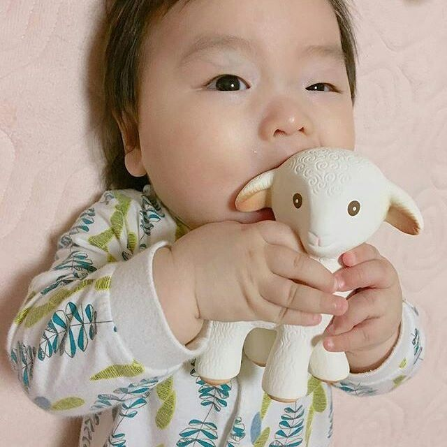 Mia The Lamb, all natural, made from 100% pure natural rubber, is his favourite teething toy!  #babyshowerideas4u #caaocho  #naturalbabytoys   #naturaltoysforkids #naturaltoys #babyshowergift #babyshowerideas #naturaltoysforbabies  #babygiftideanaturaltoys #babygiftidea #babygiftideas #babygifts #babygiftset #sensorybabytoy #naturalrubbertoys #naturalrubberbabytoys #teething #teethingbaby #naturalbabyteethers   #miathelamb