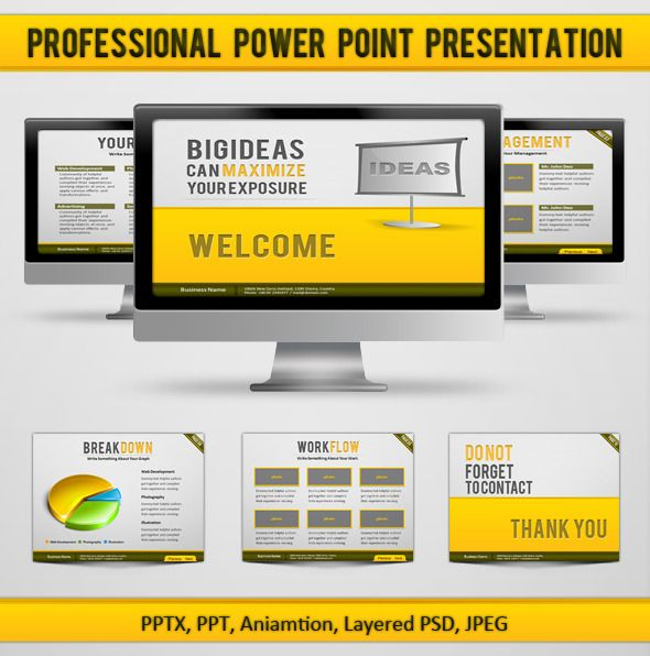 Professional Power Point Presentation