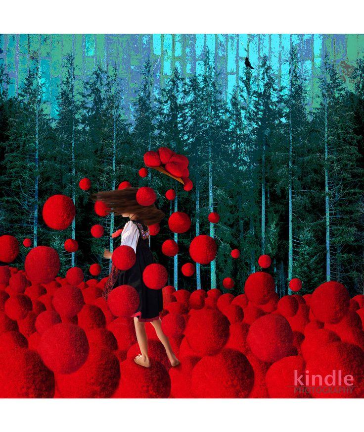 Schwarzwald Pop-Art-Kunst von der Photographin Michaela Kindle. Der Schwarzwald, gebündelt mit all seinen wunderschönen Traditionen, als farbenprächtige, moderne Fotocollagen auf Leinwand.