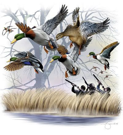 Image detail for -duck hunting - Cool Graphic