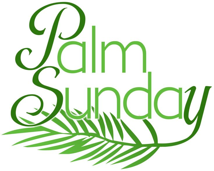 palm sunday palm crafts | PicturesPool