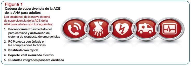 Te encuentras solo y no sabes que hacer en casa de un paro cardíaco... Aquí te explicamos como actuar PASO a PASO en un adulto. Se puede presentar daño cerebral o la muerte en unos pocos minutos si el flujo de sangre en una persona se detiene. Por lo tanto, se debe continuar con estos procedimientos hasta que los latidos y la respiración de la persona retornen o llegue ayuda médica entrenada.
