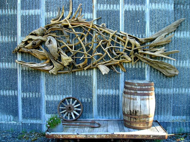 Driftwood Fish Photograph  - Driftwood Fish Fine Art Print