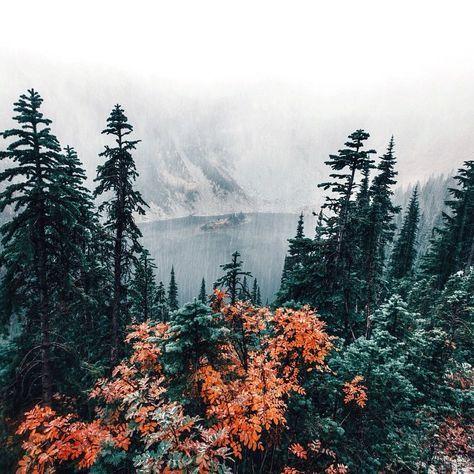autumn shades. Pinterest:: @da'jharayhenriquez