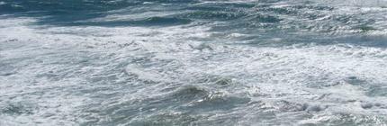"""Ana Cerrud (EFEverde).- Un nuevo canal multimedia, """"Oceansinc"""", dedicado a la difusión de información sobre el océano, y un mapa interactivo mundial con datos sobre la protección del medio marino y sus especies, son los """"regalos"""" que varios grupos ecologistas han presentado para celebrar el Día Mundial de los Océanos. El grupo internacional Oceana ha [...]"""