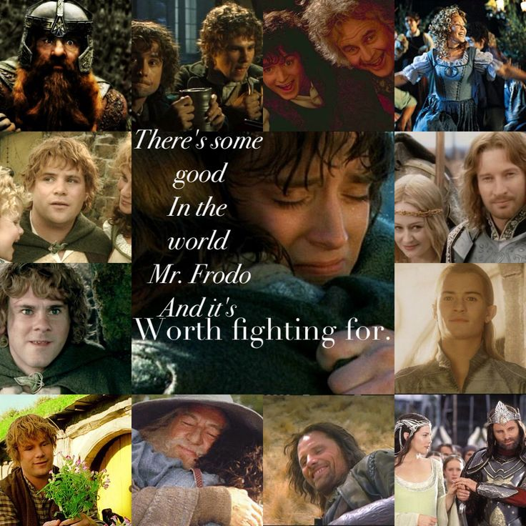 Samwise Gamgee's speech. I always think if him remembering all the good in the world when he says this so I put this collage together.  Lord of the Rings Two Towers  Samwise the Brave  Frodo  Aragorn  Legolas  Pippin  Merridoc Brandybuck  Faramir  Eomer  Eowyn  Gandalf