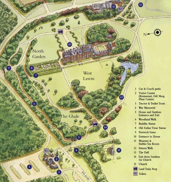 Area Plan Sandrigham