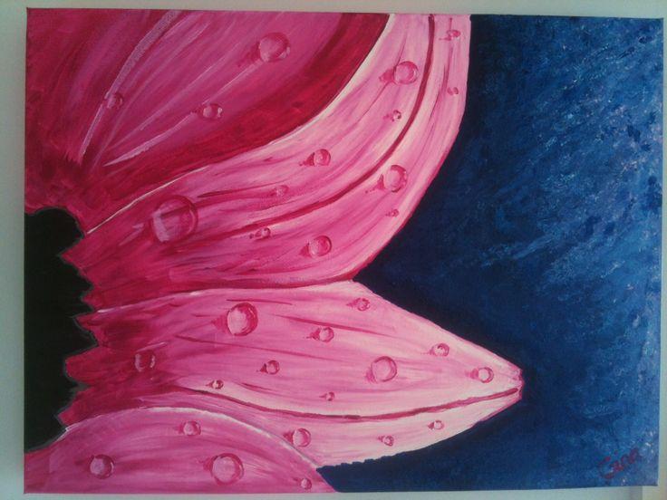 Dew Drops on Petals