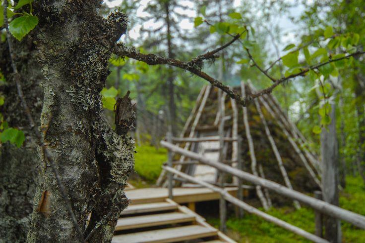 Peat goahti 2. Image by Kimmo Hyötylä.
