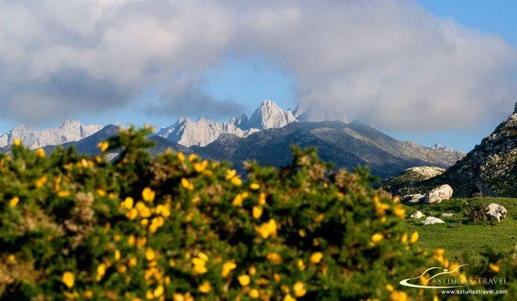 Picos de Europa en Asturias desde los lagos de Covadonga. http://www.asturiastravel.com
