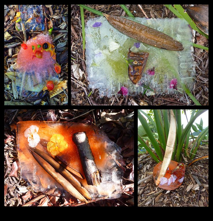 Art and Science integration. Ice Sculptures - Land Art unit. Predicting and observing changes. Students froze plastic containers of water, natural materials and food dye and placed artwork in playground. Prep year