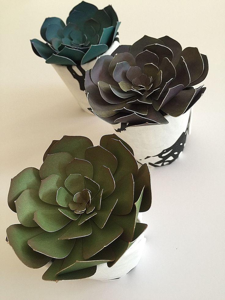 DIY Paper Plants Succulents Tutorial!