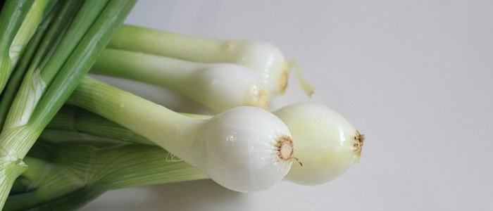 Em http://dld.bz/egNjX Obtén Un Suministro Extra De Tus Verduras Favoritas Con Agua
