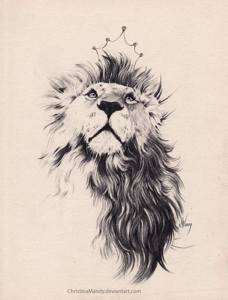 The King by ChristinaMandy.deviantart.com on @DeviantArt
