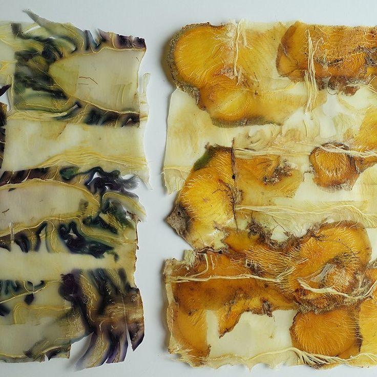 Detail van Groenteabstracten serie 12 nr2 en nr1. Gemaakt van de stronk van bloemkool, rode kool en koolraap. - Vegetable and abstract series 12, detail of number 2 and 1. Detail of these two small works, made of cauliflower and red cabbage stumps and rutabaga peels. - #angeliquevandervalk #vegetableworks #studioangeliquevandervalk #art #visualart #abstract #abstractart #minimalist #contemporaryart #waste #material #detail #sustainable #dried #vegetable
