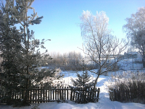 Już za kilka miesięcy ;) - Dywity, zima, Warmia