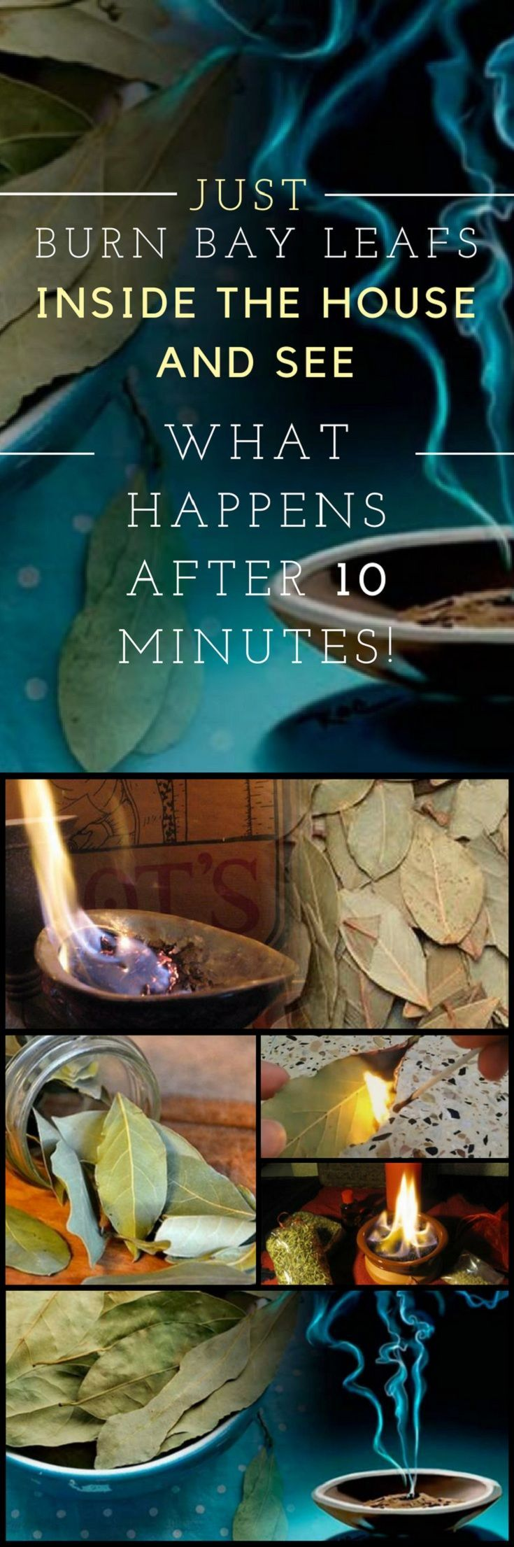 Just Burn Bay Leafs Inside the House and See What Happens After 10 Minutes! #bay #leafs #herbal #benefits #home #remedies #diy