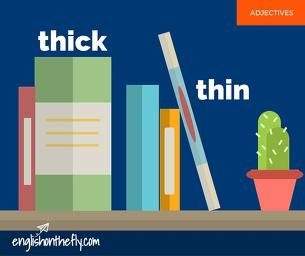 English vocabulary for ESL and EFL students. Thick and Thin