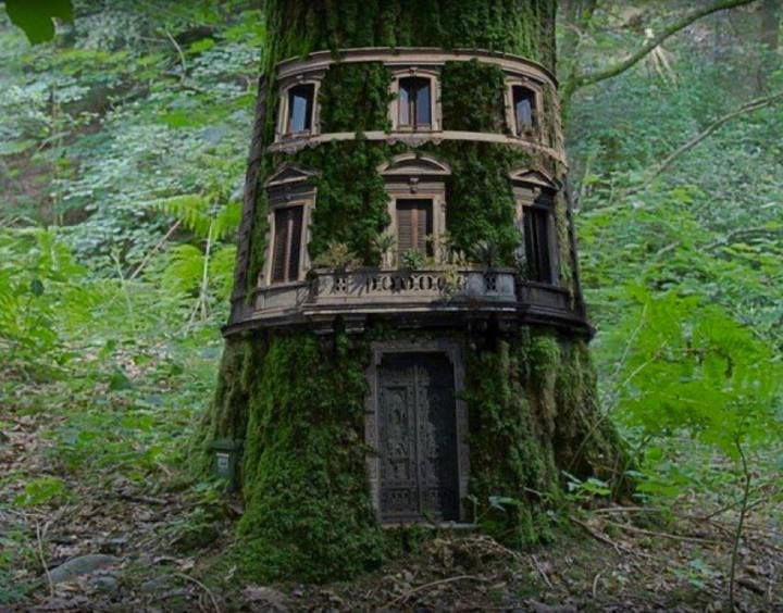 Nice Tree Houses 33 best tree house images on pinterest | architecture, treehouses