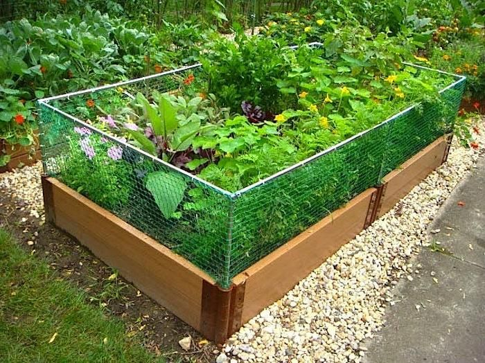 this expandable protection system adapts to all frame it all raised gardens high enough to keep rabbits woodchucks and other small animals out of your