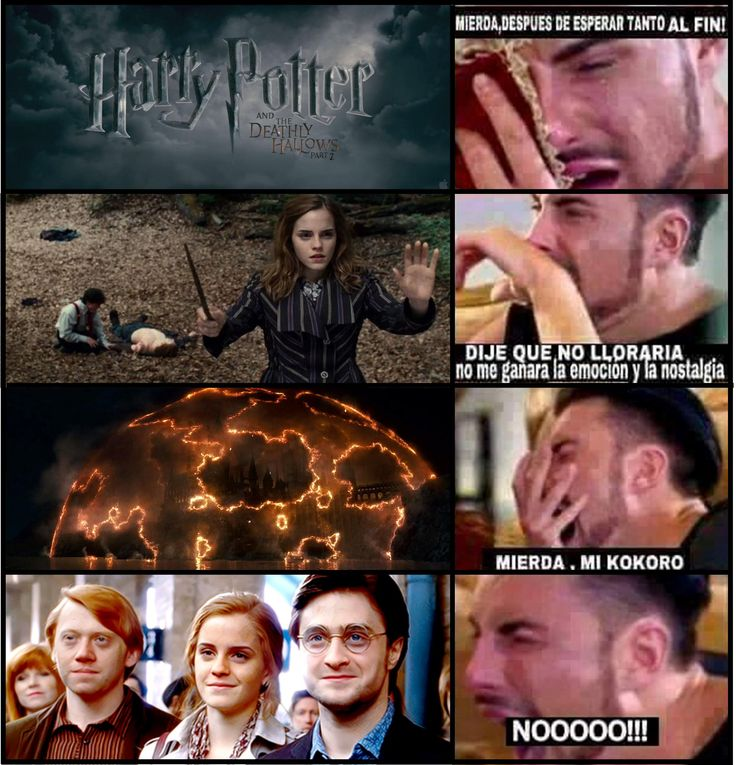Harry Potter | Hermione Granger | Ron Weasley | Reliquias de la muerte | Batalla de Hogwarts