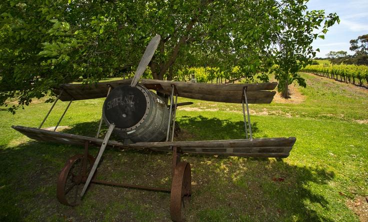 Robin Turner's barrel bi-plane sculpture in the Cellar Door garden...
