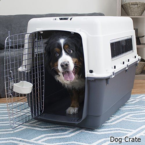 Dog Crate - broad variety. Have to check out...