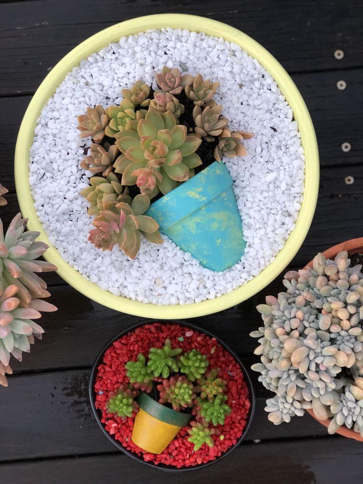 Spilled planting