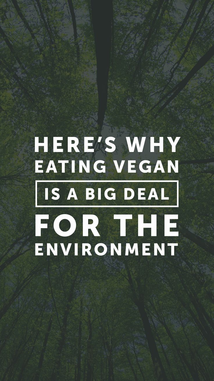 Eating Vegan Is One of the Best Things You Can Do for the Environment