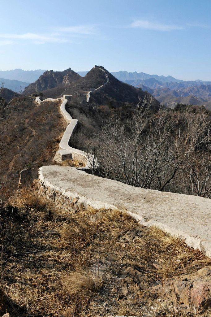万里の長城、当局の修復で真っ平らに「爆破した方がまし」との声も