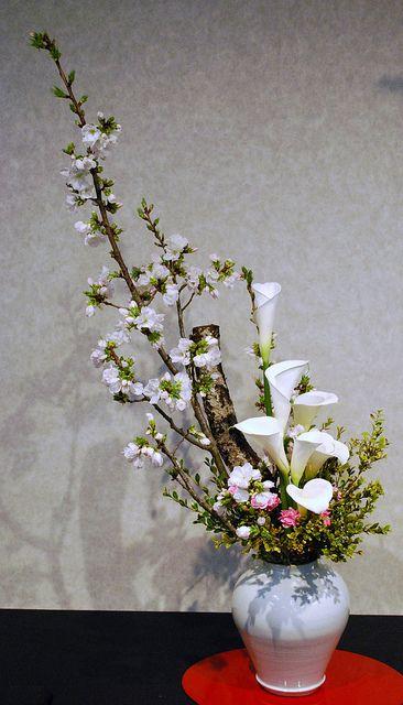 Kyoto Ikebana Exhibition   Flickr - Photo Sharing!