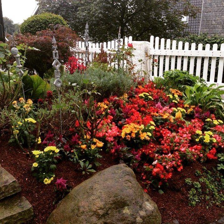 Farbe Im Garten Bringt Auch Farbe Ins Leben Garten Blumen Vorgarten Home Homeinspiration Modernliving Aussenanlage Gartengestaltung Garten Vorgarten