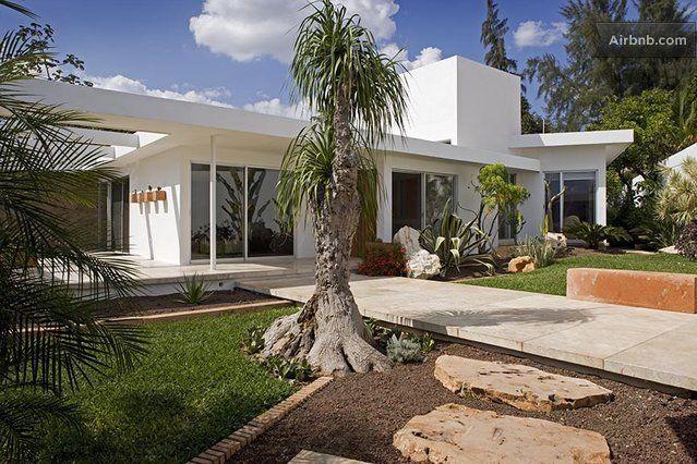 My Top 10 Tips for Mid Century Garden Design