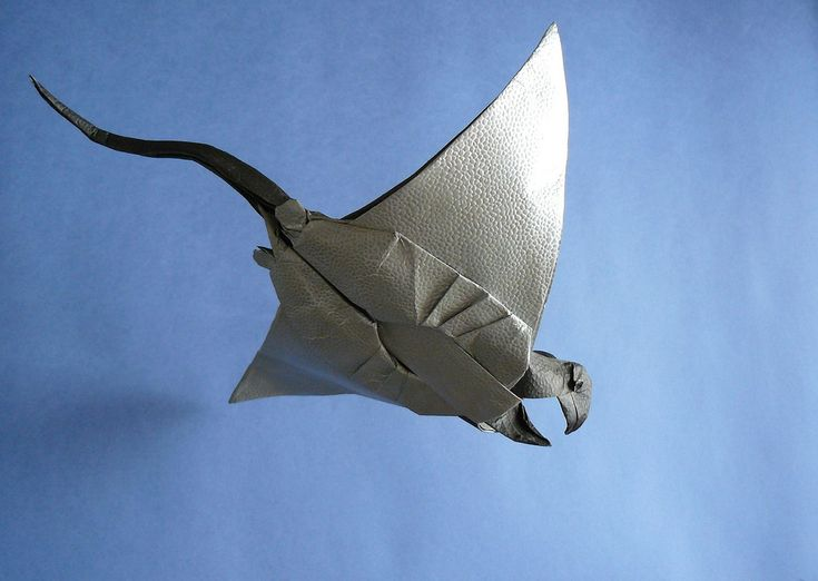 manta ray face diagram 818 best origami images on pinterest | origami animals ... origami manta ray diagram #3