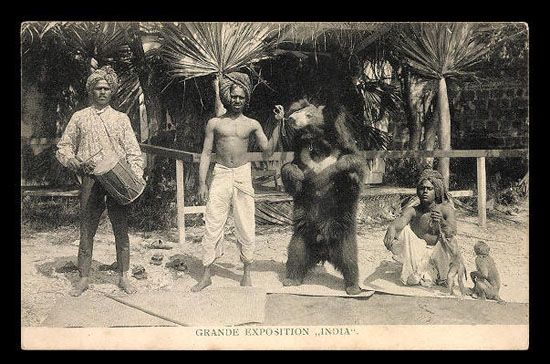 "BEAR TAMER ours Grande exposition ""India\"""