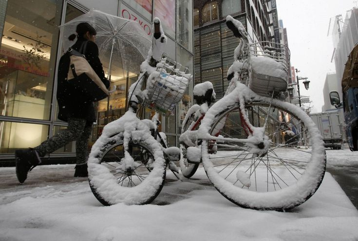 Strade, giardini e grattacieli imbiancati: immagini insolite per Tokyo dove non nevicava così da 13 anni. Nel centro città sono caduti oltre 30 centimetri di neve. Scenari da favola, ma anche tantissimi disagi. I media giapponesi parlano di decine di feriti per cadute e tamponame