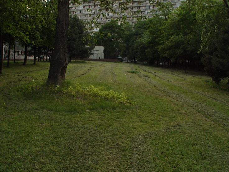 Osuskeho, Petrzalka (May 2008)