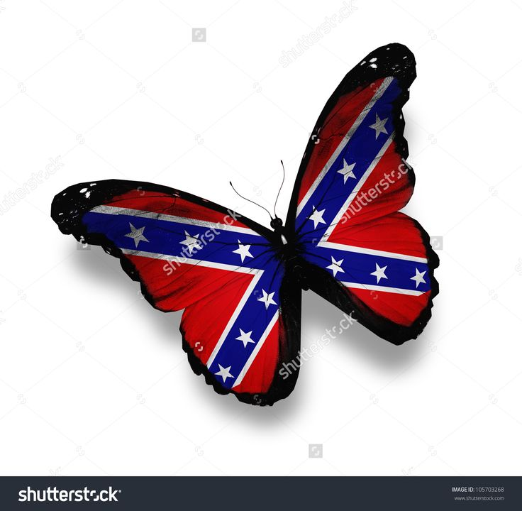 Confederate Rebel Flag Butterfly, Isolated On White Stock Photo ...